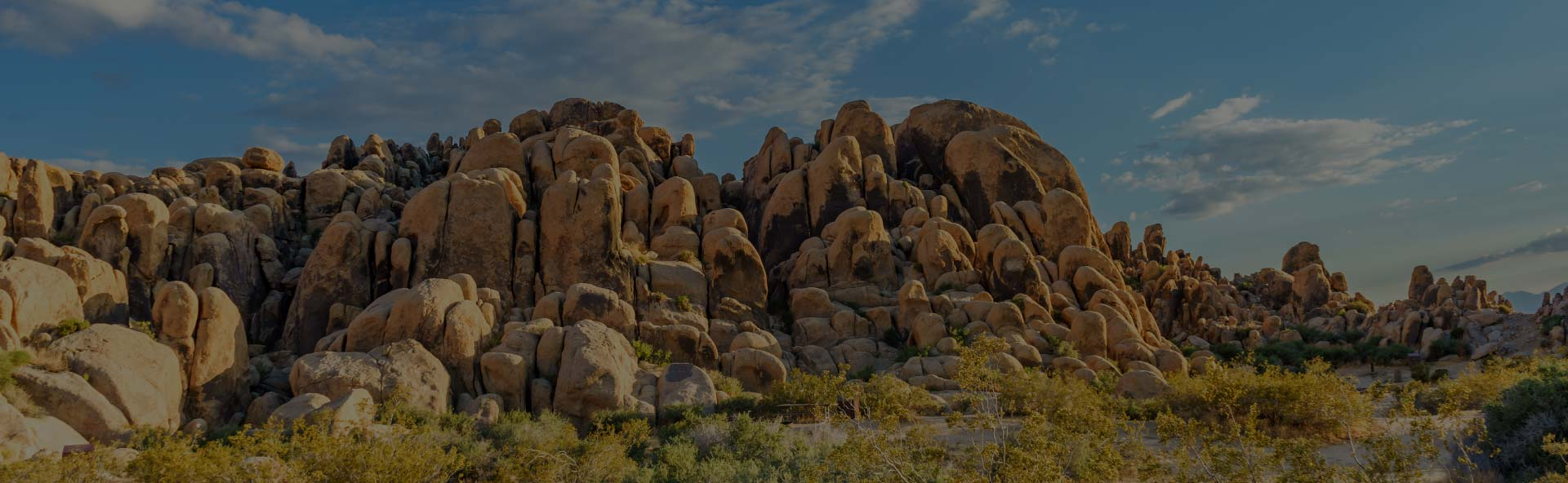 NAHREP High Desert can help YOU build your business
